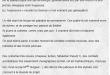 """Aladdin - La Prophétie: Blog """"De la Cour au Jardin"""" - 20.07.2017"""