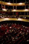 Le Livre de la Jungle au Théâtre du Gymnase - Saison 2014/2015